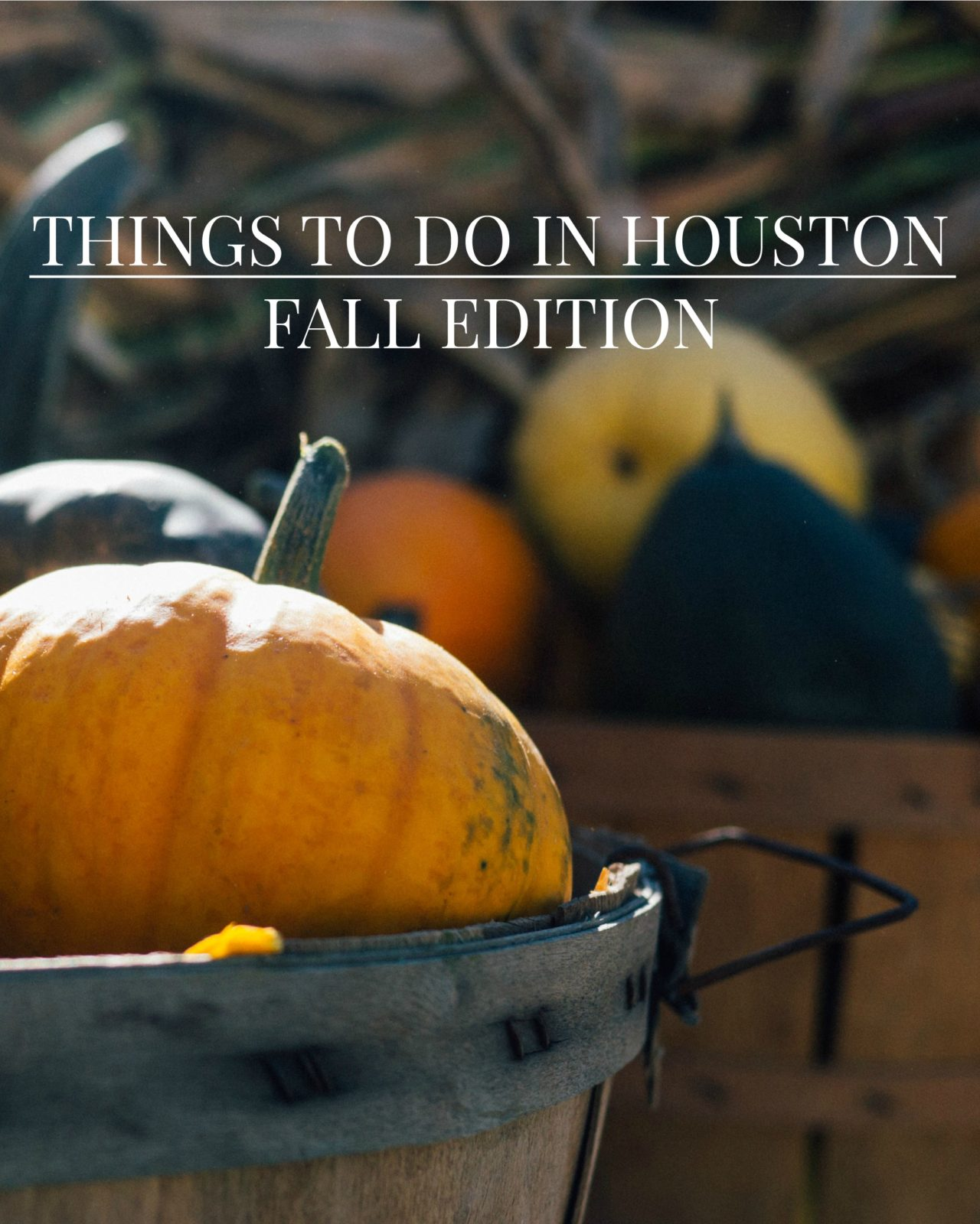A list of things to do in Houston this 2016 fall season. Perfect to find Houston events if you plan to travel to Houston, Texas during the fall. Includes Houston breweries, markets, fun runs, fall festivals, and more. // www.ElleTalk.com