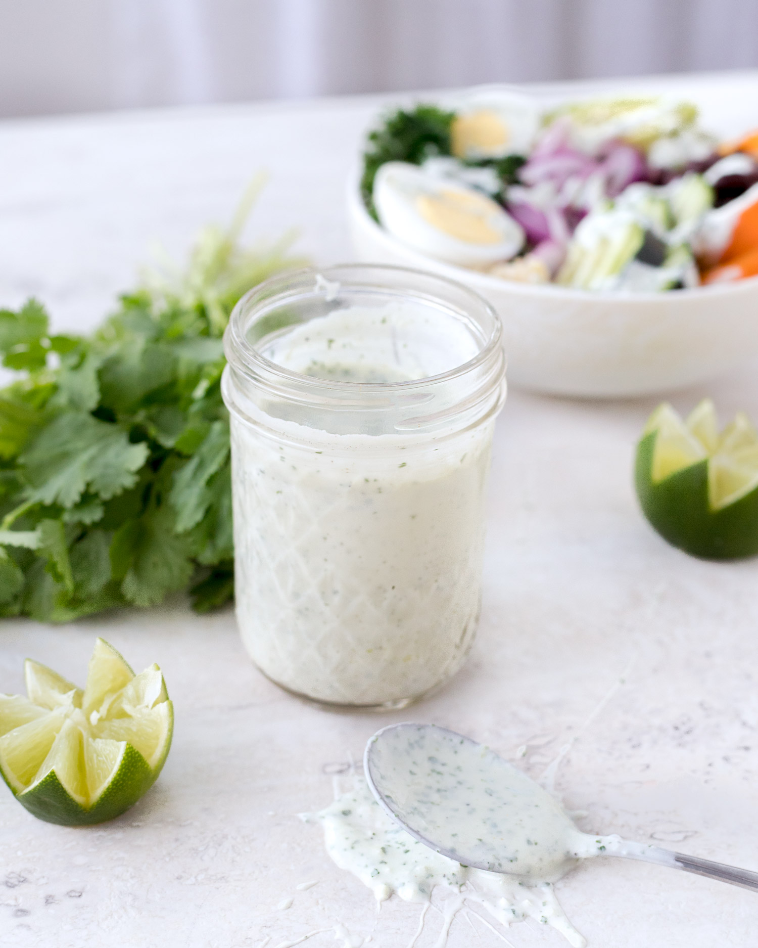 Greek yogurt sauce that's made with cilantro and lime for a tangy sauce that's perfect for dressing salads or topping tacos. Greek Yogurt Dressing. Elle Talk #Dressing #SauceRecipe #GreekYogurtRecipe #SaladRecipe #Cilantro #LimeJuice