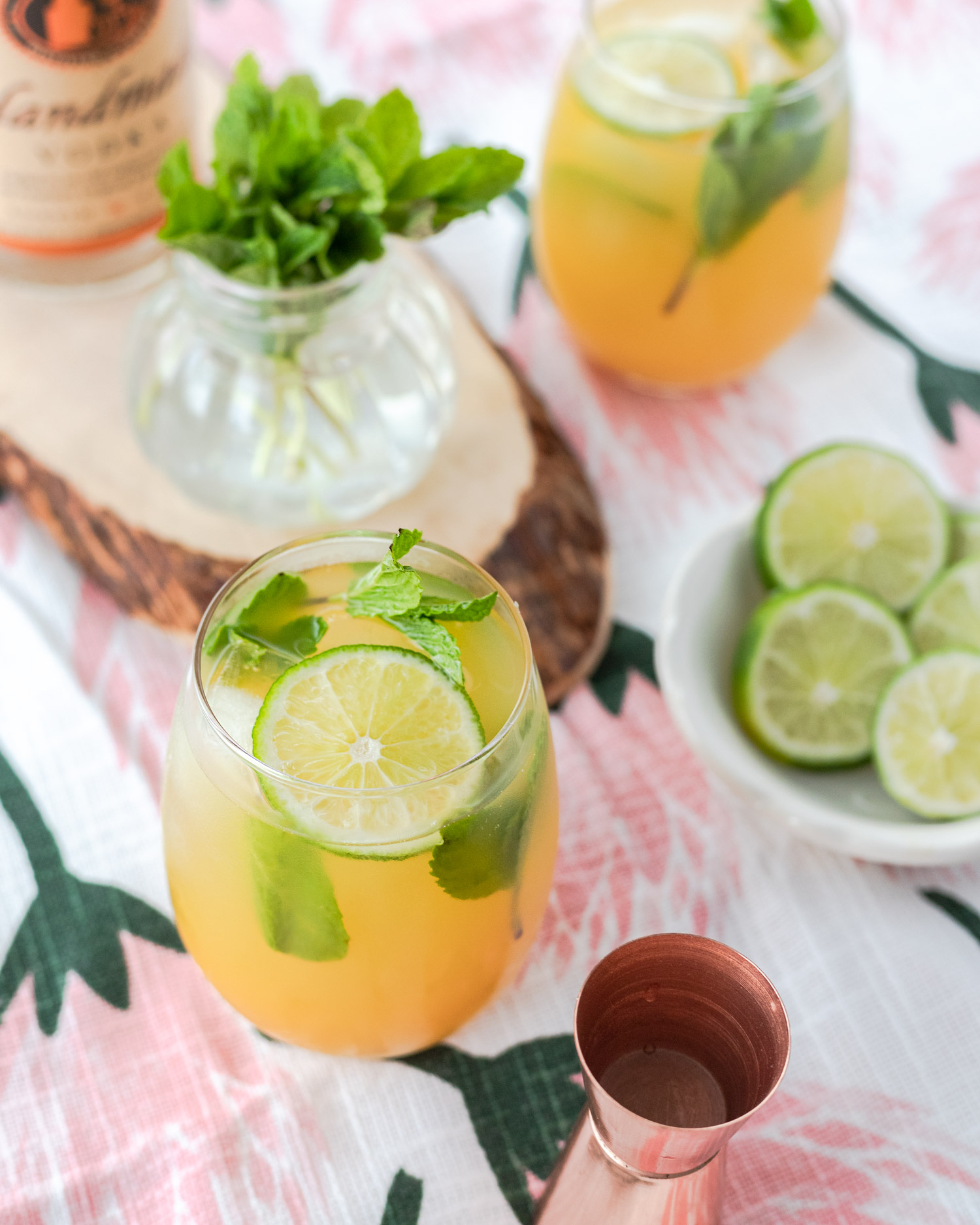 Mango Mint Vodka Cooler Elle Talk,Questions To Ask When Buying A House For Sale By Owner